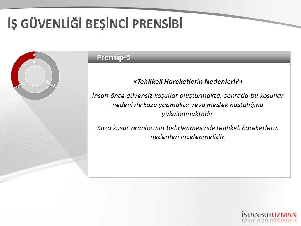 Prensip-5Prensip-5 «Tehlikeli Hareketlerin Nedenleri » İnsan önce güvensiz koşullar oluşturmakta, sonrada bu koşullar nedeniyle kaza yapmakta veya meslek hastalığına yakalanmaktadır.