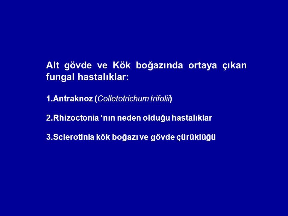 Alt gövde ve Kök boğazında ortaya çıkan fungal hastalıklar: 1.Antraknoz (Colletotrichum trifolii) 2.Rhizoctonia 'nın neden olduğu hastalıklar 3.Sclero