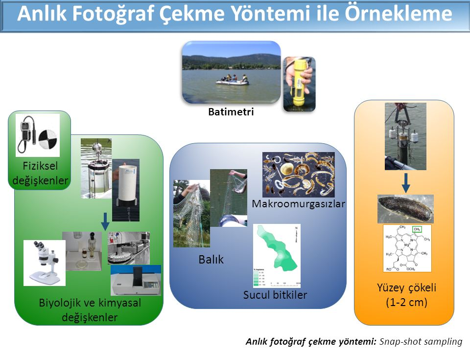 Batimetri Anlık Fotoğraf Çekme Yöntemi ile Örnekleme Makroomurgasızlar Sucul bitkiler Balık Biyolojik ve kimyasal değişkenler Yüzey çökeli (1-2 cm) Fiziksel değişkenler Anlık fotoğraf çekme yöntemi: Snap-shot sampling