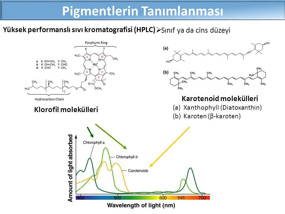 Pigmentlerin Tanımlanması Klorofil molekülleri Karotenoid molekülleri (a)Xanthophyll (Diatoxanthin) (b)Karoten (β-karoten)  Sınıf ya da cins düzeyi Yüksek performanslı sıvı kromatografisi (HPLC)