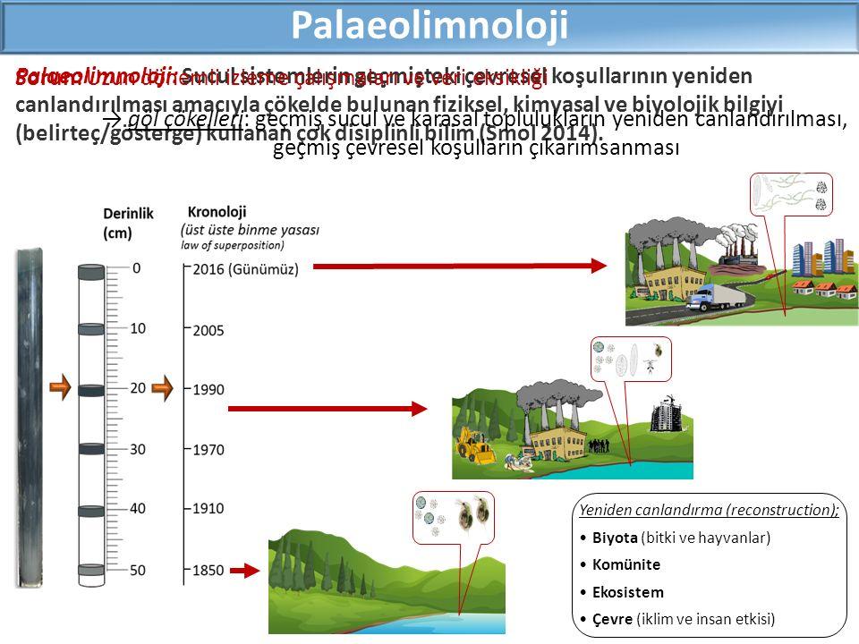 Palaeolimnoloji Palaeolimnoloji: Sucul sistemlerin geçmişteki çevresel koşullarının yeniden canlandırılması amacıyla çökelde bulunan fiziksel, kimyasal ve biyolojik bilgiyi (belirteç/gösterge) kullanan çok disiplinli bilim (Smol 2014).