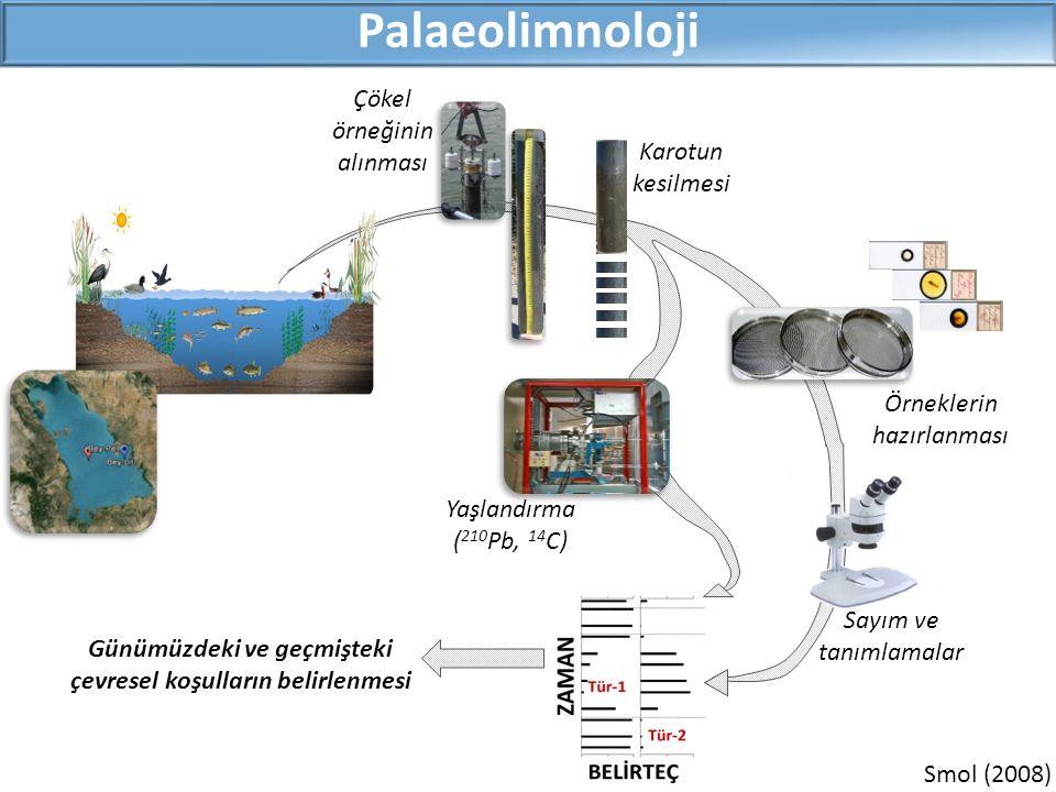Smol (2008) Palaeolimnoloji Çökel örneğinin alınması Karotun kesilmesi Örneklerin hazırlanması Yaşlandırma ( 210 Pb, 14 C) Sayım ve tanımlamalar Günüm