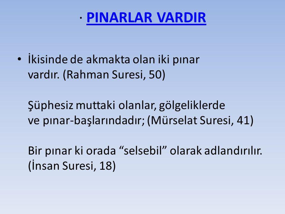 · PINARLAR VARDIRPINARLAR VARDIR İkisinde de akmakta olan iki pınar vardır.