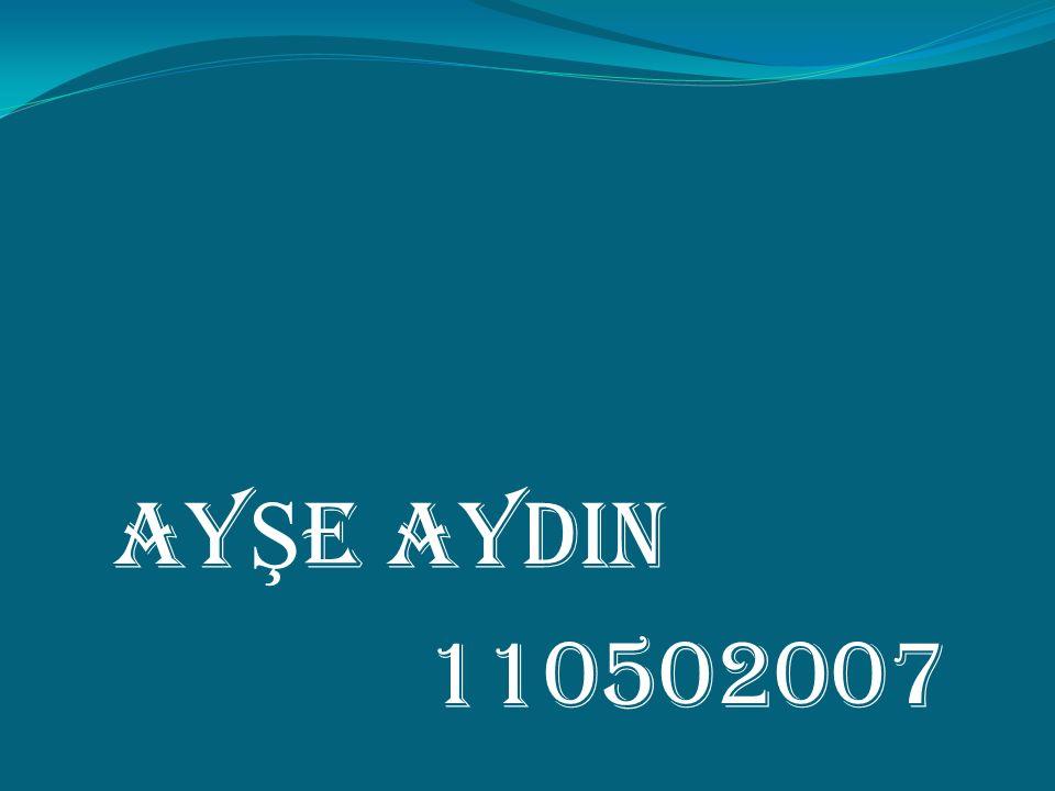 AY Ş E AYDIN 110502007