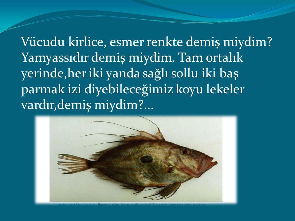 Rum balıkçıların hrisopsaros -Hristos balığı- dedikleri bu balık, vaktiyle korkunç bir deniz canavarı imiş.