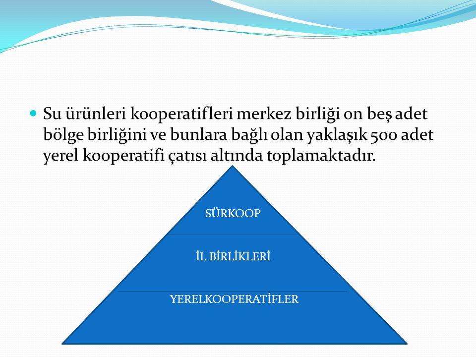 Su ürünleri kooperatifleri merkez birliği on beş adet bölge birliğini ve bunlara bağlı olan yaklaşık 500 adet yerel kooperatifi çatısı altında toplama