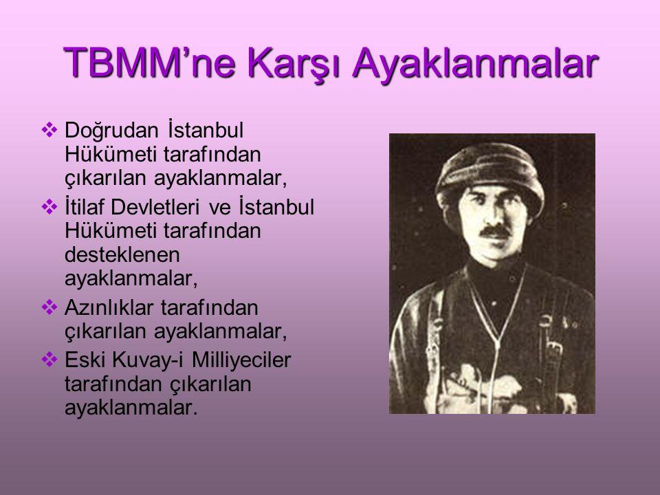 TBMM'ne Karşı Ayaklanmalar İstanbul Hükümeti'nin ayaklanma çıkarmasında: Anadolu'da kaybettiği otoritesini yeniden kurmak, Milli Mücadele'yi sona erdirerek, Osmanlı Devleti'ne uygun görülen topraklarda yaşamak, düşüncesi etkili oldu.