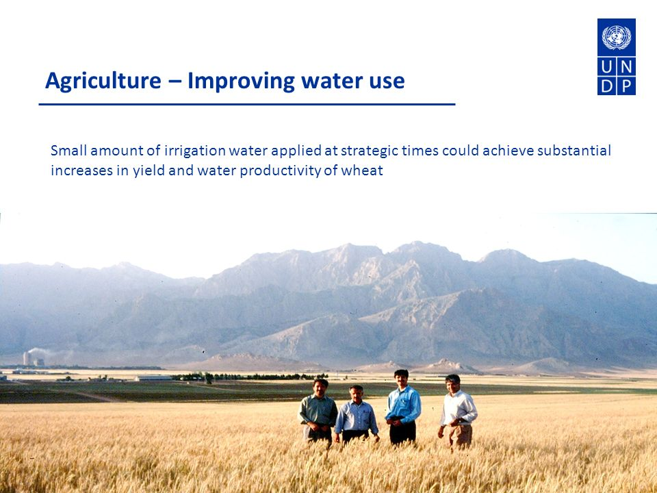 Agriculture – Improving water use Small amount of irrigation water applied at strategic times could achieve substantial increases in yield and water productivity of wheat