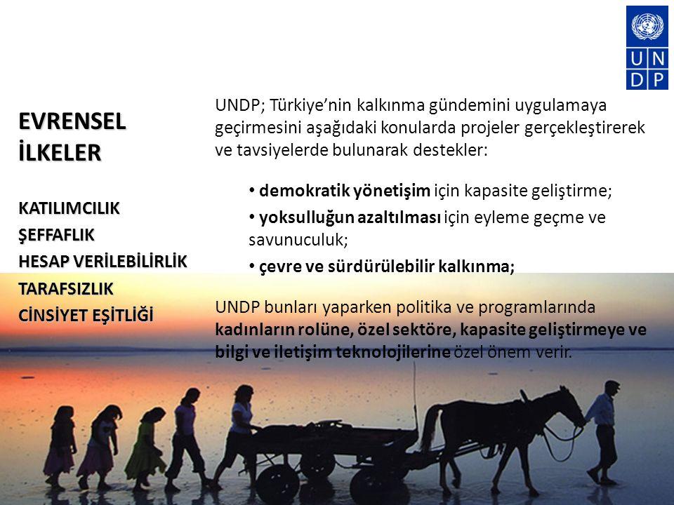 UNDP; Türkiye'nin kalkınma gündemini uygulamaya geçirmesini aşağıdaki konularda projeler gerçekleştirerek ve tavsiyelerde bulunarak destekler: demokratik yönetişim için kapasite geliştirme; yoksulluğun azaltılması için eyleme geçme ve savunuculuk; çevre ve sürdürülebilir kalkınma; UNDP bunları yaparken politika ve programlarında kadınların rolüne, özel sektöre, kapasite geliştirmeye ve bilgi ve iletişim teknolojilerine özel önem verir.