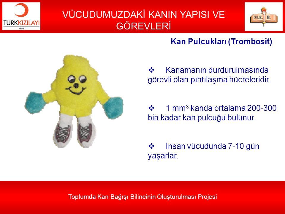 Toplumda Kan Bağışı Bilincinin Oluşturulması Projesi VÜCUDUMUZDAKİ KANIN YAPISI VE GÖREVLERİ Kan Pulcukları (Trombosit)  Kanamanın durdurulmasında gö