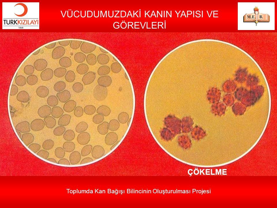 Toplumda Kan Bağışı Bilincinin Oluşturulması Projesi VÜCUDUMUZDAKİ KANIN YAPISI VE GÖREVLERİ ÇÖKELME