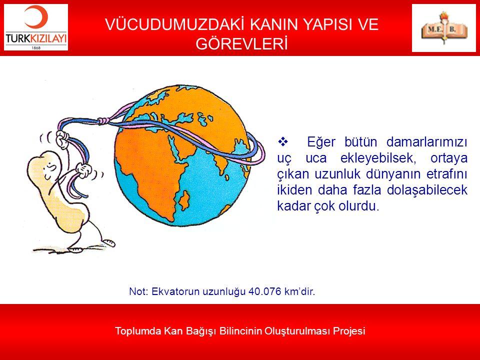 VÜCUDUMUZDAKİ KANIN YAPISI VE GÖREVLERİ  Eğer bütün damarlarımızı uç uca ekleyebilsek, ortaya çıkan uzunluk dünyanın etrafını ikiden daha fazla dolaş