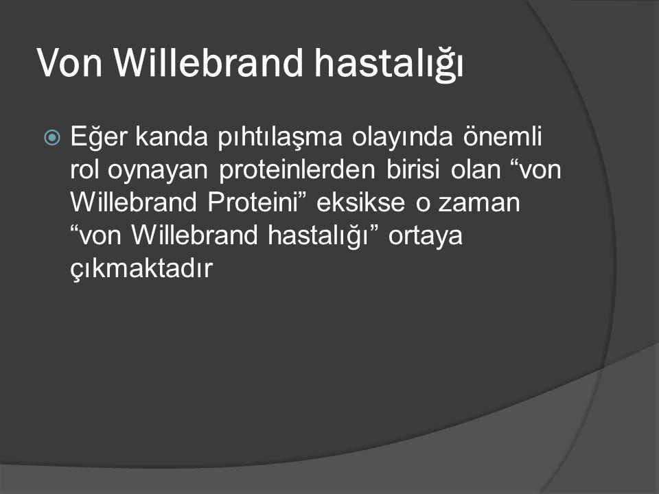 """Von Willebrand hastalığı  Eğer kanda pıhtılaşma olayında önemli rol oynayan proteinlerden birisi olan """"von Willebrand Proteini"""" eksikse o zaman """"von"""