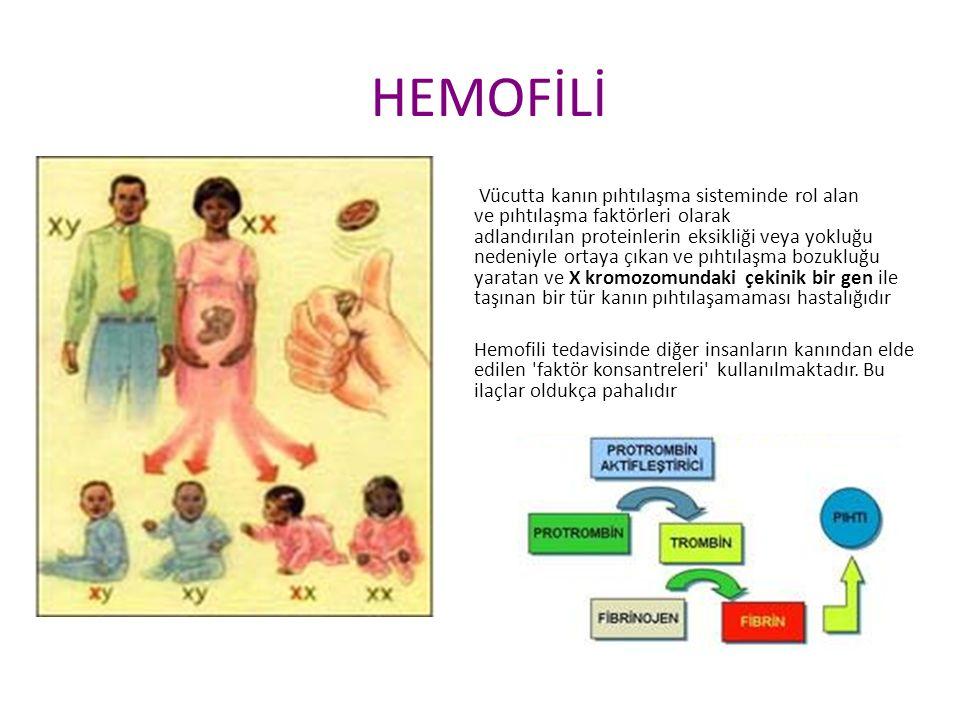 HEMOFİLİ Vücutta kanın pıhtılaşma sisteminde rol alan ve pıhtılaşma faktörleri olarak adlandırılan proteinlerin eksikliği veya yokluğu nedeniyle ortaya çıkan ve pıhtılaşma bozukluğu yaratan ve X kromozomundaki çekinik bir gen ile taşınan bir tür kanın pıhtılaşamaması hastalığıdır Hemofili tedavisinde diğer insanların kanından elde edilen faktör konsantreleri kullanılmaktadır.