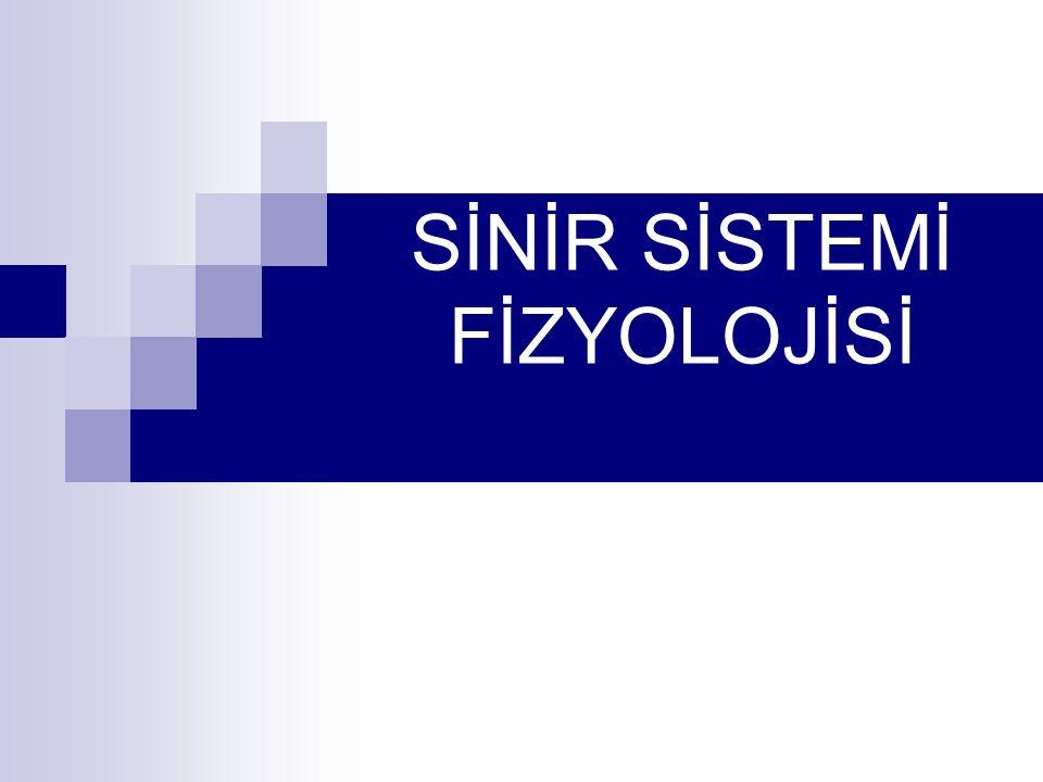 Sinir Organizasyonu Bu mekanizmanın en ilkeli sinir ağları, en kompleks olanları da sinapsları olan sinir sistemleridir.