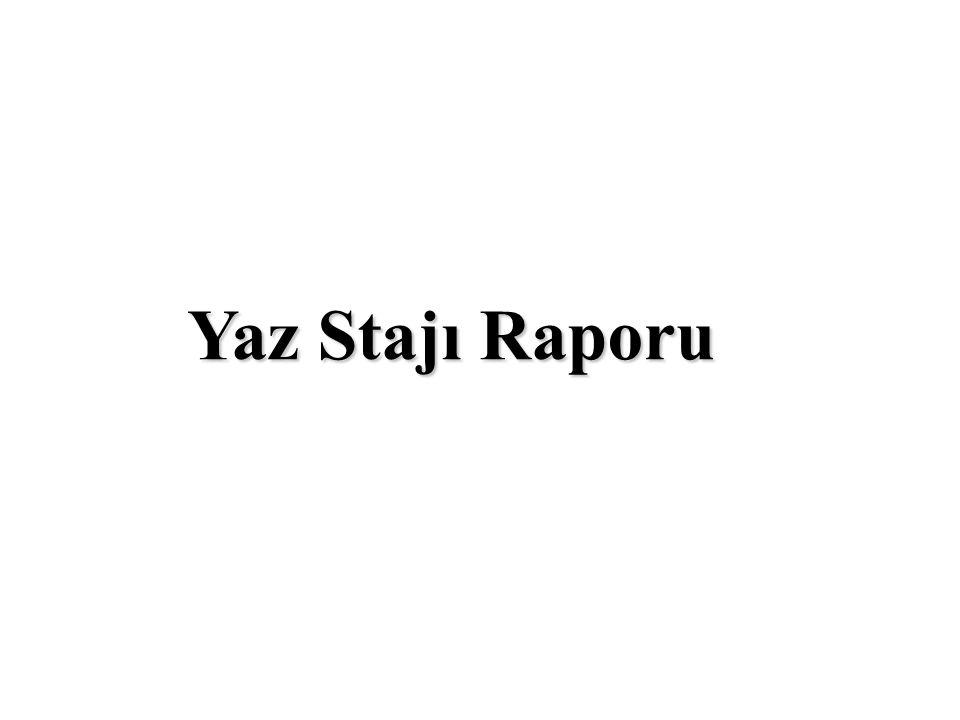 Yaz Stajı Raporu