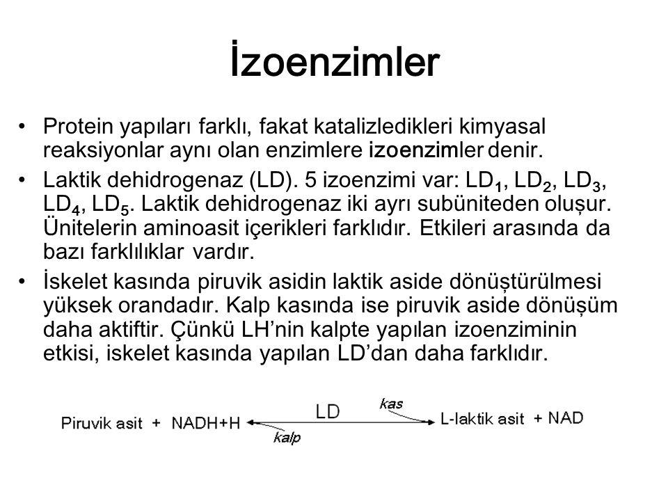 İzoenzimler Protein yapıları farklı, fakat katalizledikleri kimyasal reaksiyonlar aynı olan enzimlere izoenzimler denir. Laktik dehidrogenaz (LD). 5 i