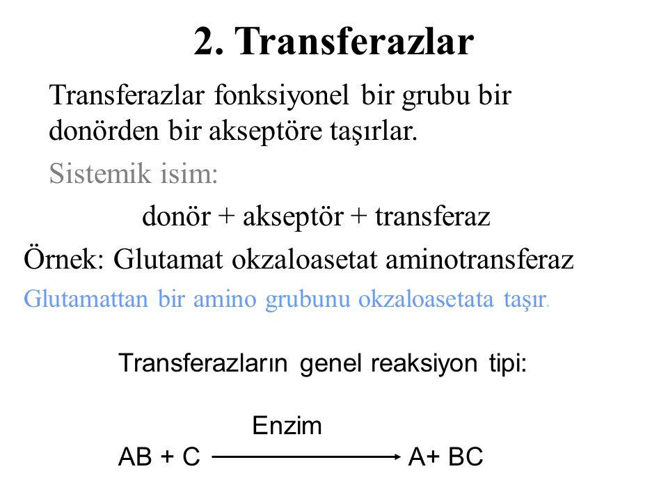 2.Transferazlar Transferazlar fonksiyonel bir grubu bir donörden bir akseptöre taşırlar.