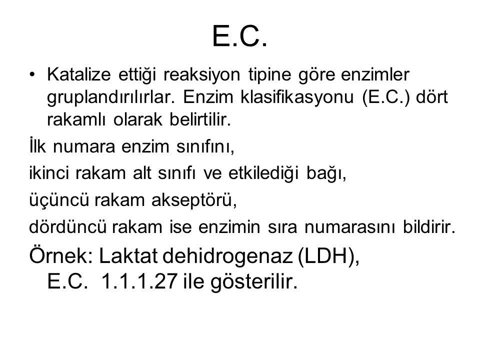 E.C. Katalize ettiği reaksiyon tipine göre enzimler gruplandırılırlar. Enzim klasifikasyonu (E.C.) dört rakamlı olarak belirtilir. İlk numara enzim sı