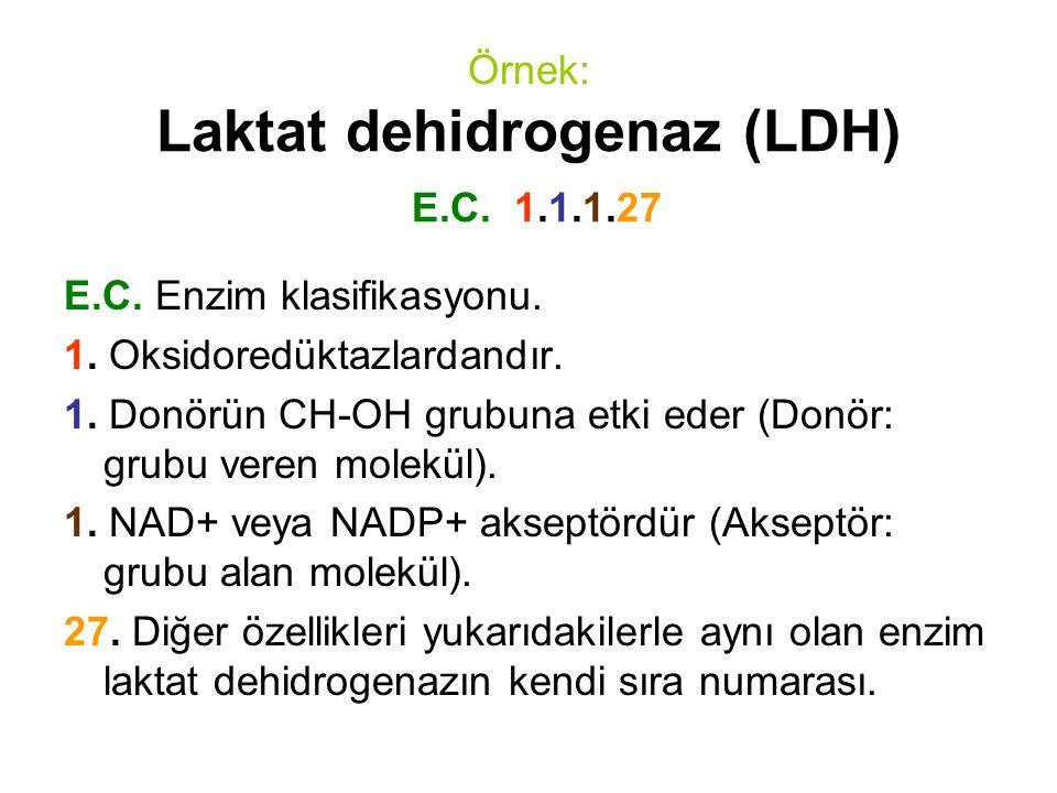 Örnek: Laktat dehidrogenaz (LDH) E.C. 1.1.1.27 E.C. Enzim klasifikasyonu. 1. Oksidoredüktazlardandır. 1. Donörün CH-OH grubuna etki eder (Donör: grubu