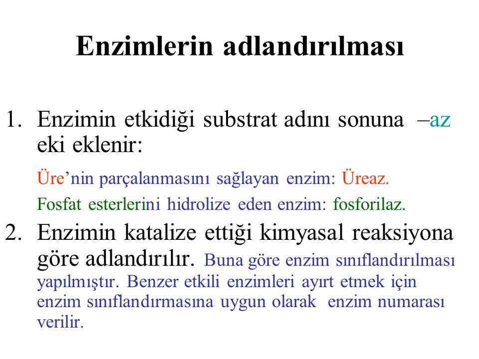 Enzimlerin sınıflandırılması: 1.Oksidoredüktazlar 2.