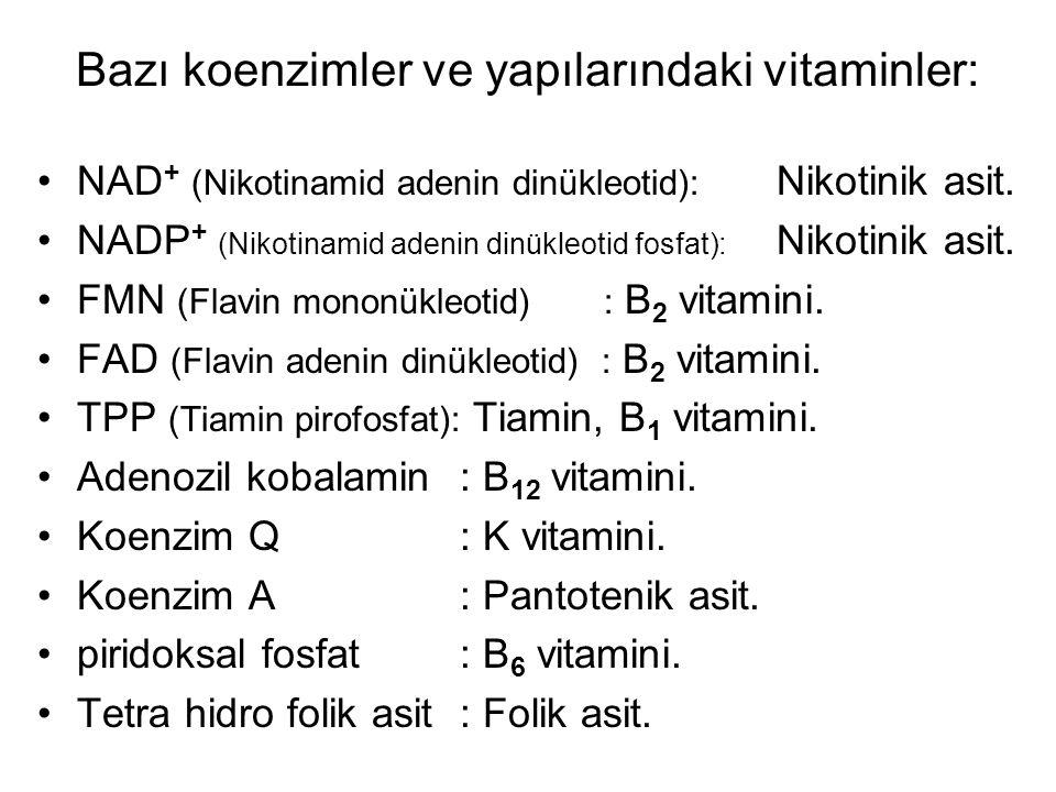 NAD + (Nikotinamid adenin dinükleotid): Nikotinik asit.