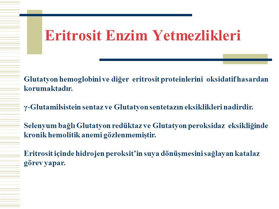 Eritrosit Enzim Yetmezlikleri Glutatyon hemoglobini ve diğer eritrosit proteinlerini oksidatif hasardan korumaktadır.