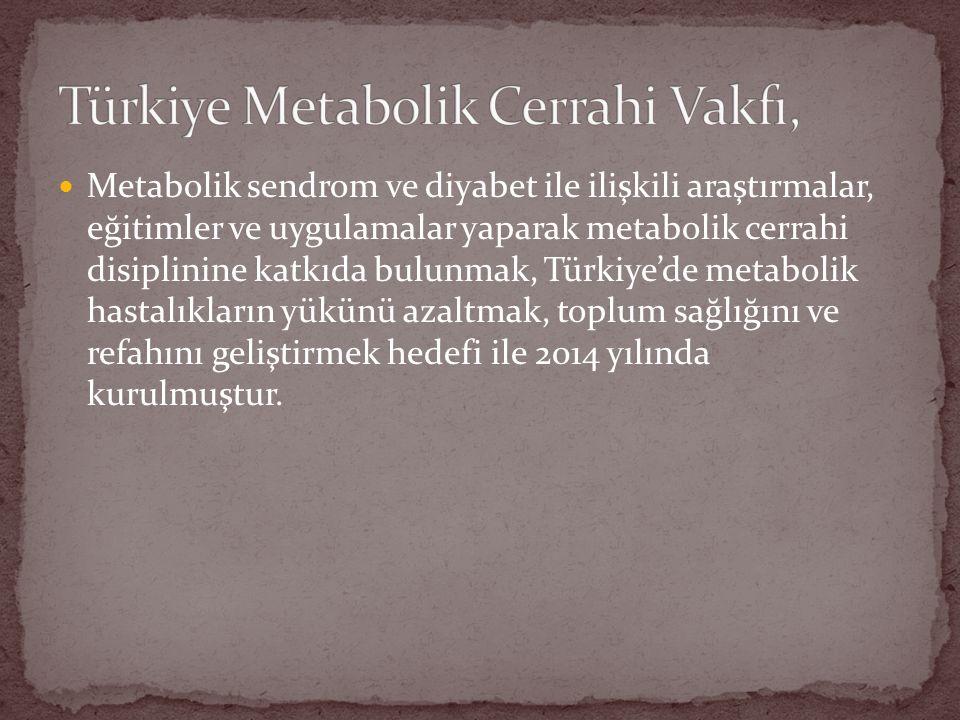 Metabolik sendrom ve diyabet ile ilişkili araştırmalar, eğitimler ve uygulamalar yaparak metabolik cerrahi disiplinine katkıda bulunmak, Türkiye'de metabolik hastalıkların yükünü azaltmak, toplum sağlığını ve refahını geliştirmek hedefi ile 2014 yılında kurulmuştur.