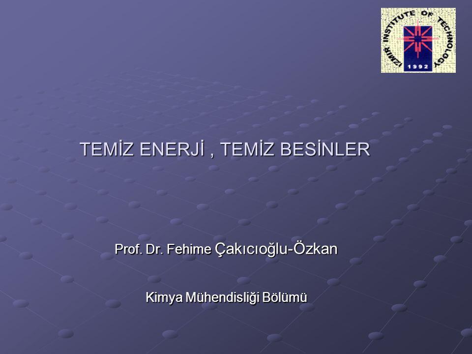 TEMİZ ENERJİ, TEMİZ BESİNLER Prof. Dr. Fehime Çakıcıoğlu-Özkan Kimya Mühendisliği Bölümü