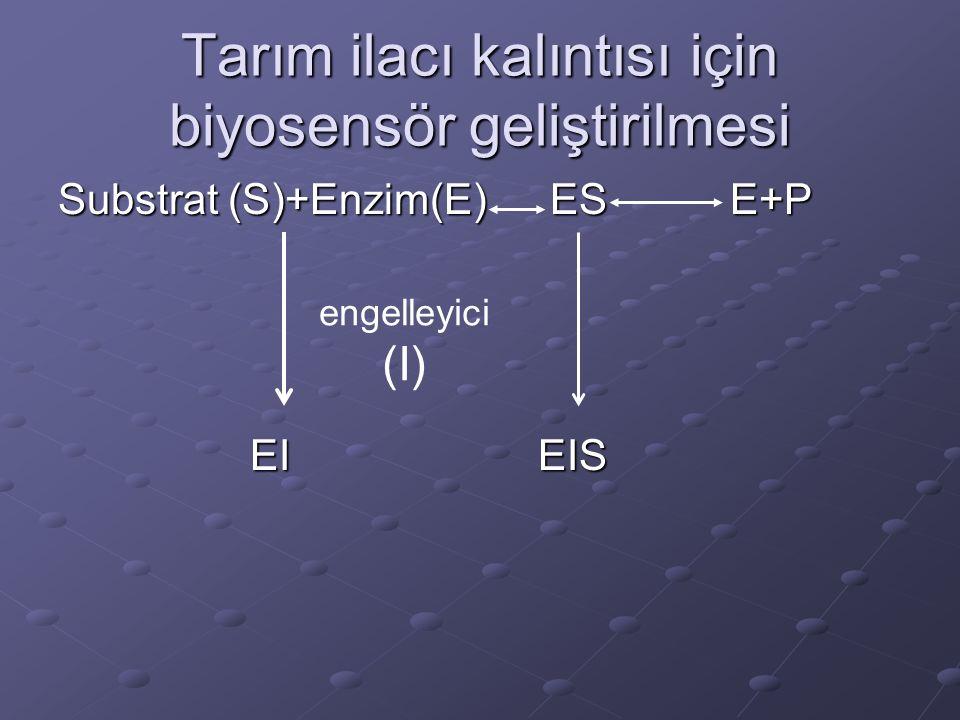 Tarım ilacı kalıntısı için biyosensör geliştirilmesi Substrat (S)+Enzim(E) ESE+P EIEIS engelleyici (I)