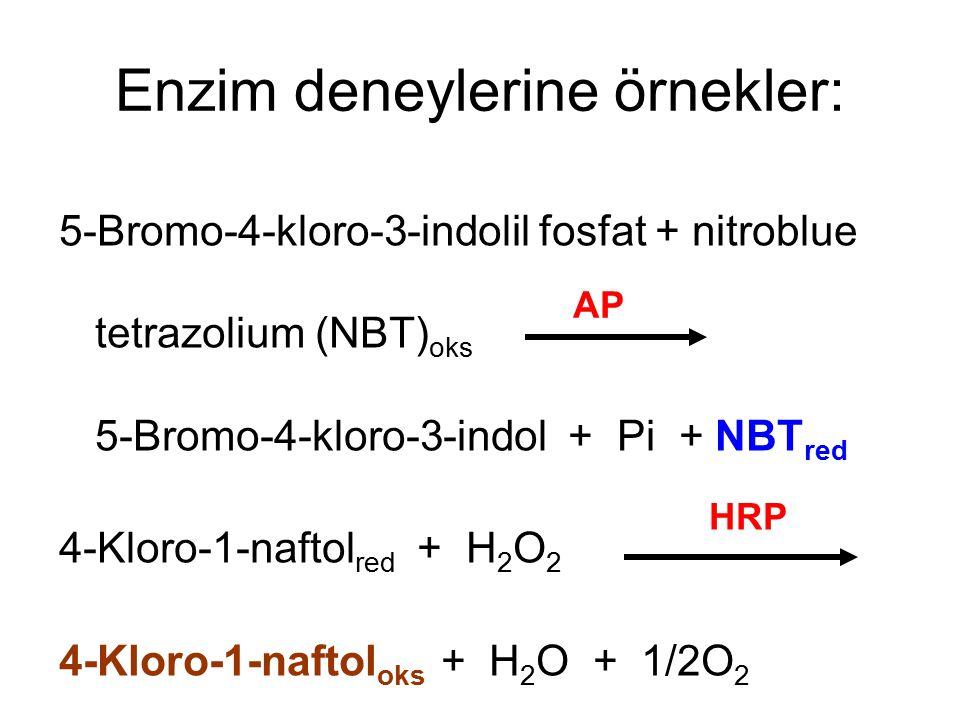 Enzim deneylerine örnekler: 5-Bromo-4-kloro-3-indolil fosfat + nitroblue tetrazolium (NBT) oks 5-Bromo-4-kloro-3-indol + Pi + NBT red 4-Kloro-1-naftol red + H 2 O 2 4-Kloro-1-naftol oks + H 2 O + 1/2O 2 AP HRP