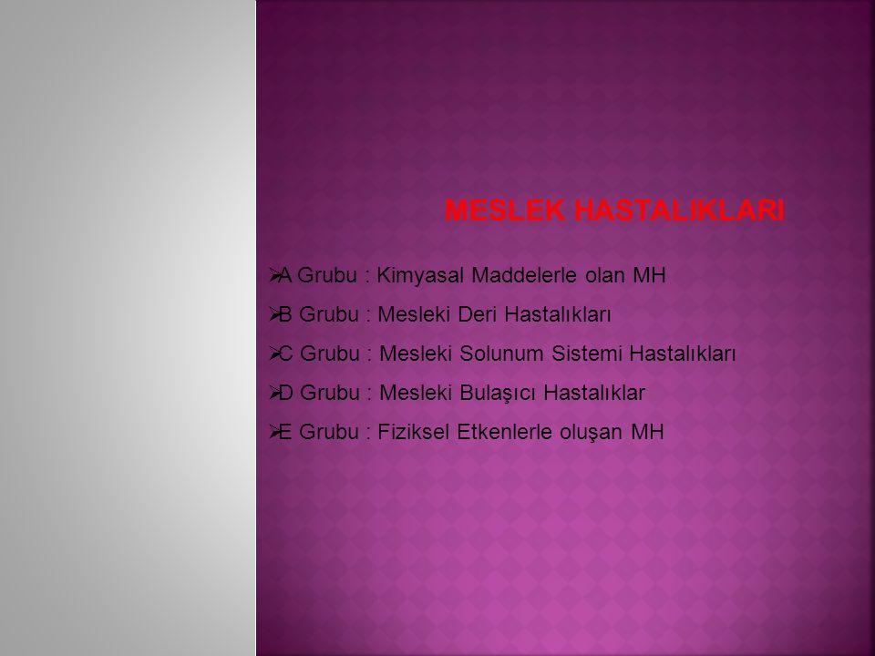 MESLEK HASTALIKLARI  A Grubu : Kimyasal Maddelerle olan MH  B Grubu : Mesleki Deri Hastalıkları  C Grubu : Mesleki Solunum Sistemi Hastalıkları  D Grubu : Mesleki Bulaşıcı Hastalıklar  E Grubu : Fiziksel Etkenlerle oluşan MH