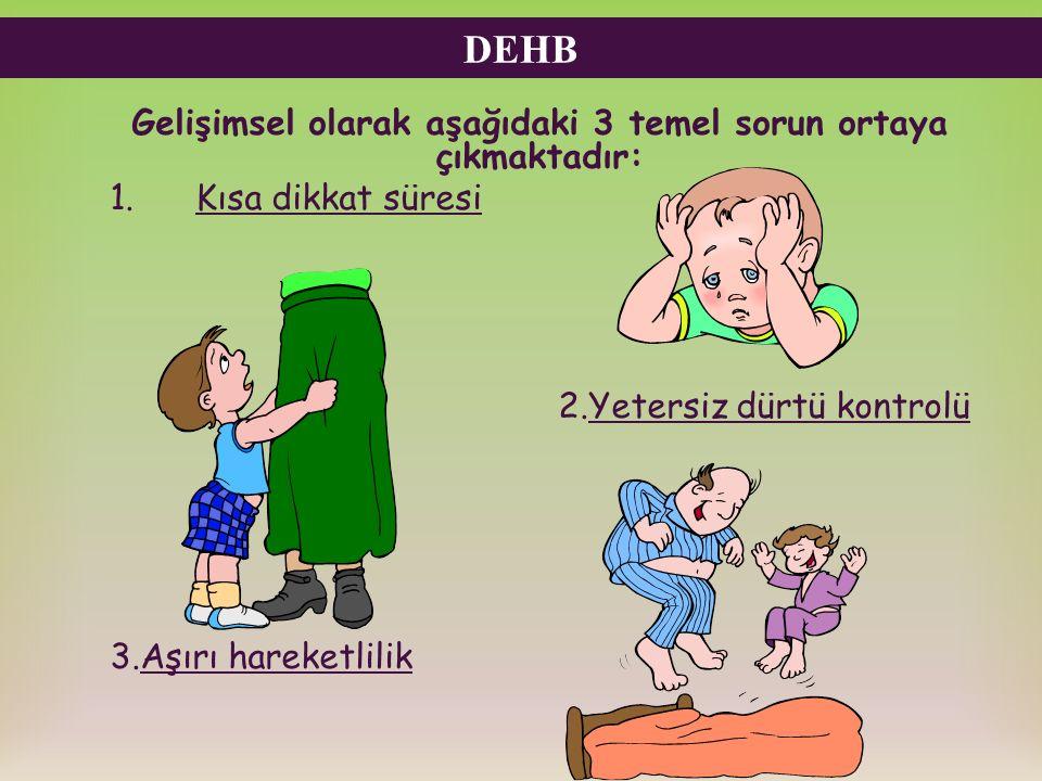DEHB Gelişimsel olarak aşağıdaki 3 temel sorun ortaya çıkmaktadır: 1. Kısa dikkat süresi 2.Yetersiz dürtü kontrolü 3.Aşırı hareketlilik