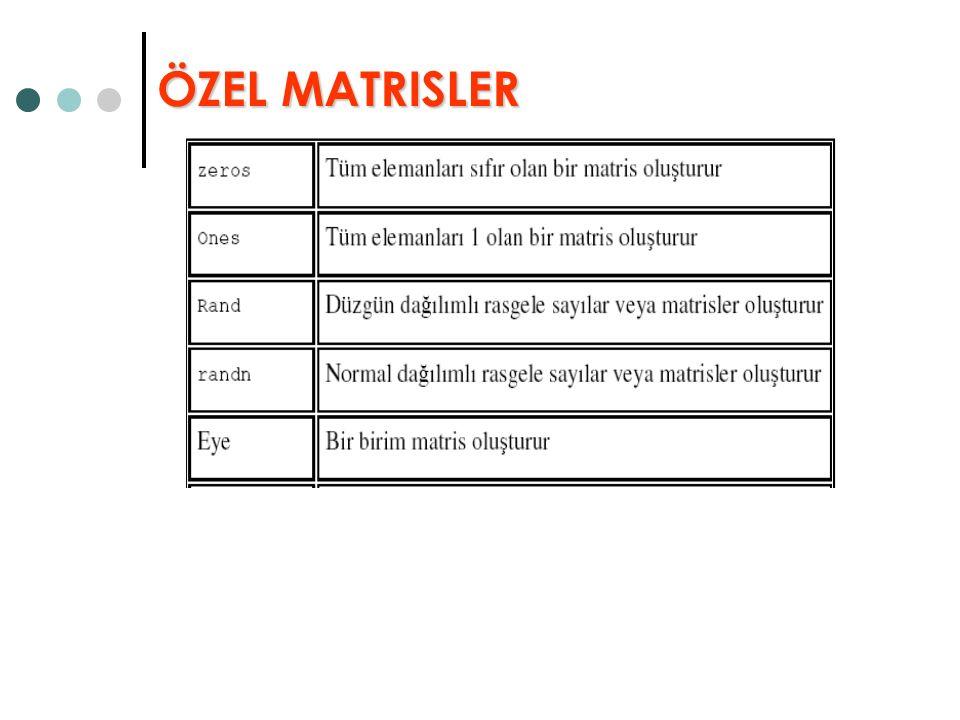 ÖZEL MATRISLER