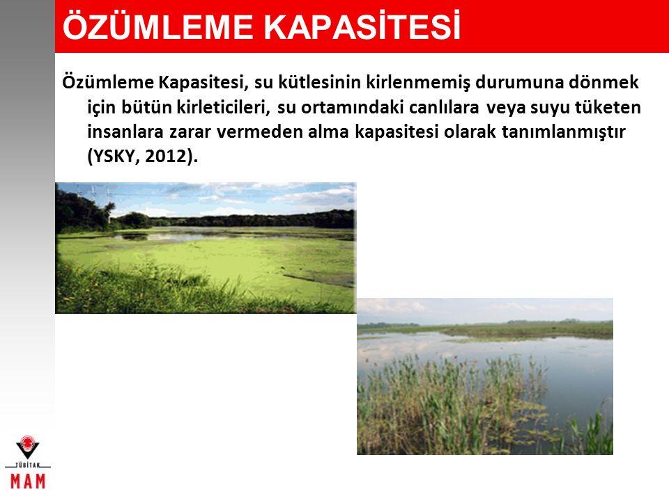 ÖZÜMLEME KAPASİTESİ BELİRLENMESİ YAKLAŞIMI Carlson İndeksine göre Potansiyel Hassas Alan (PHA) olarak değerlendirilen göl ve baraj su kütlelerinin hassas olup olmama durumunu belirlemek için ampirik formüllerin kullanılması uygun bulunmuştur.