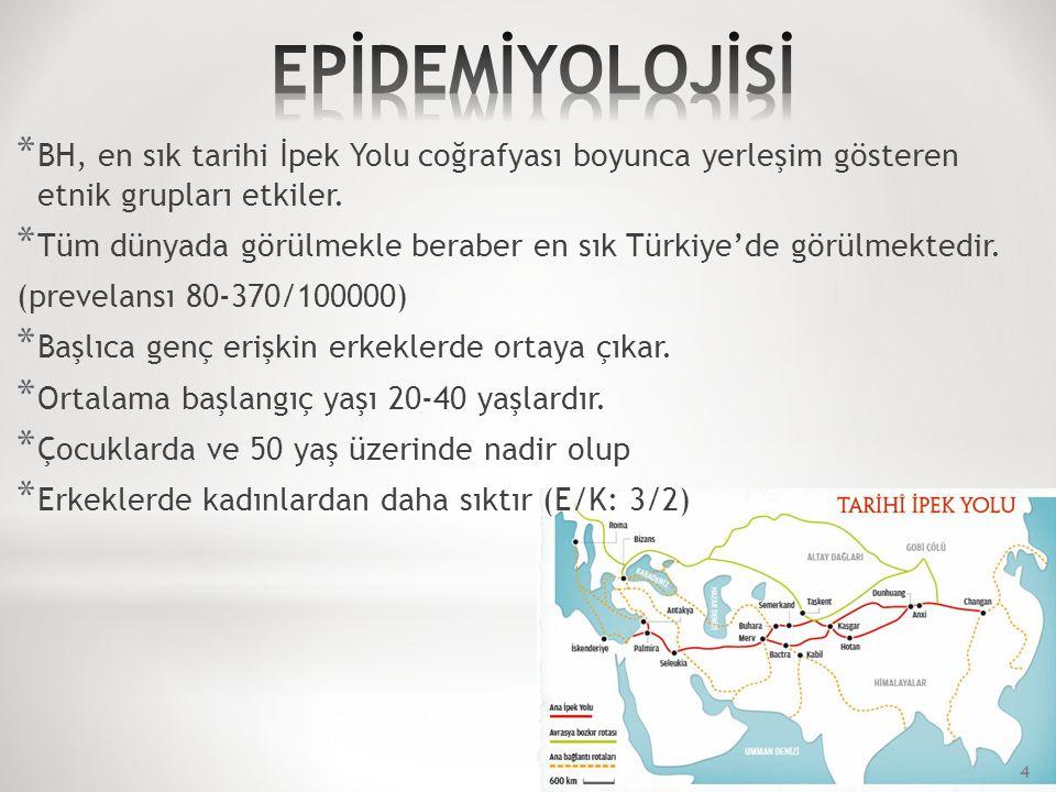 * BH, en sık tarihi İpek Yolu coğrafyası boyunca yerleşim gösteren etnik grupları etkiler.