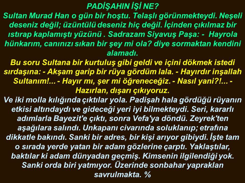 PADİŞAHIN İŞİ NE. Sultan Murad Han o gün bir hoştu.