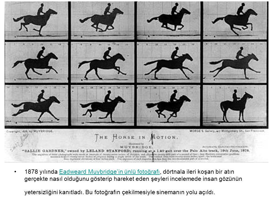 1878 yılında Eadweard Muybridge'in ünlü fotoğrafı, dörtnala ileri koşan bir atın gerçekte nasıl olduğunu gösterip hareket eden şeyleri incelemede in