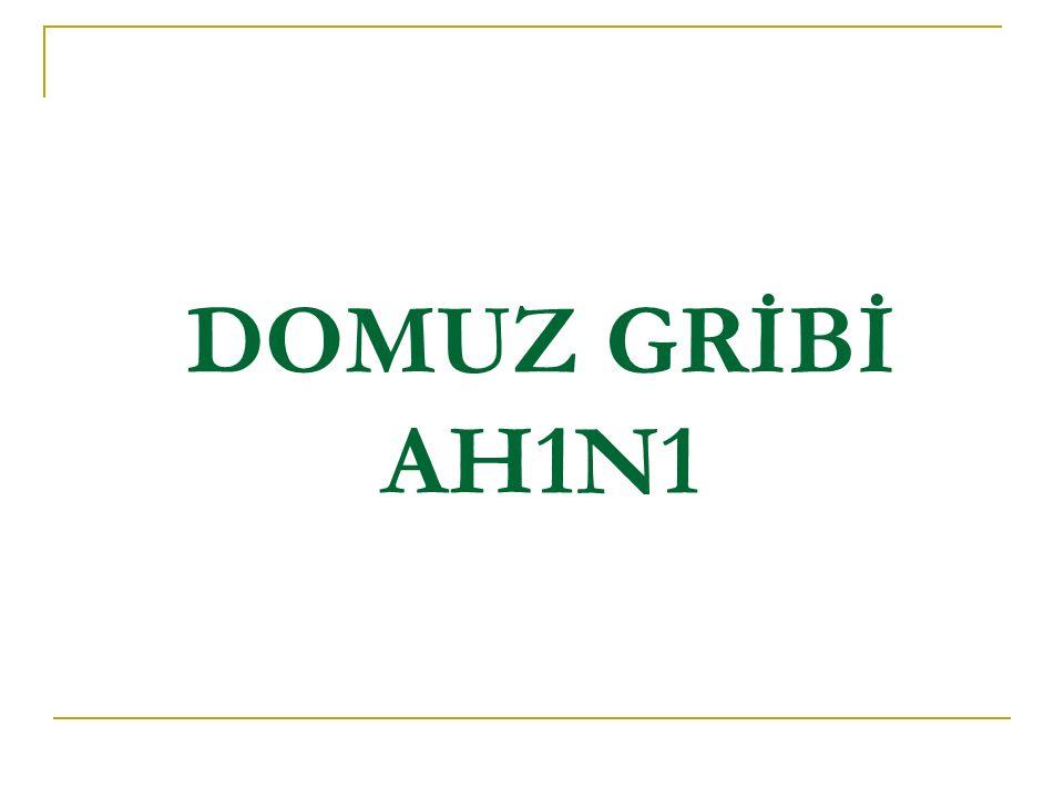 DOMUZ GRİBİ AH1N1