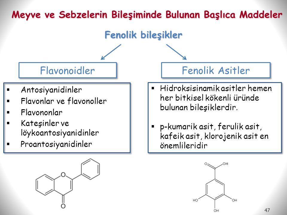 47 Meyve ve Sebzelerin Bileşiminde Bulunan Başlıca Maddeler Fenolik bileşikler Fenolik Asitler Flavonoidler  Antosiyanidinler  Flavonlar ve flavonol