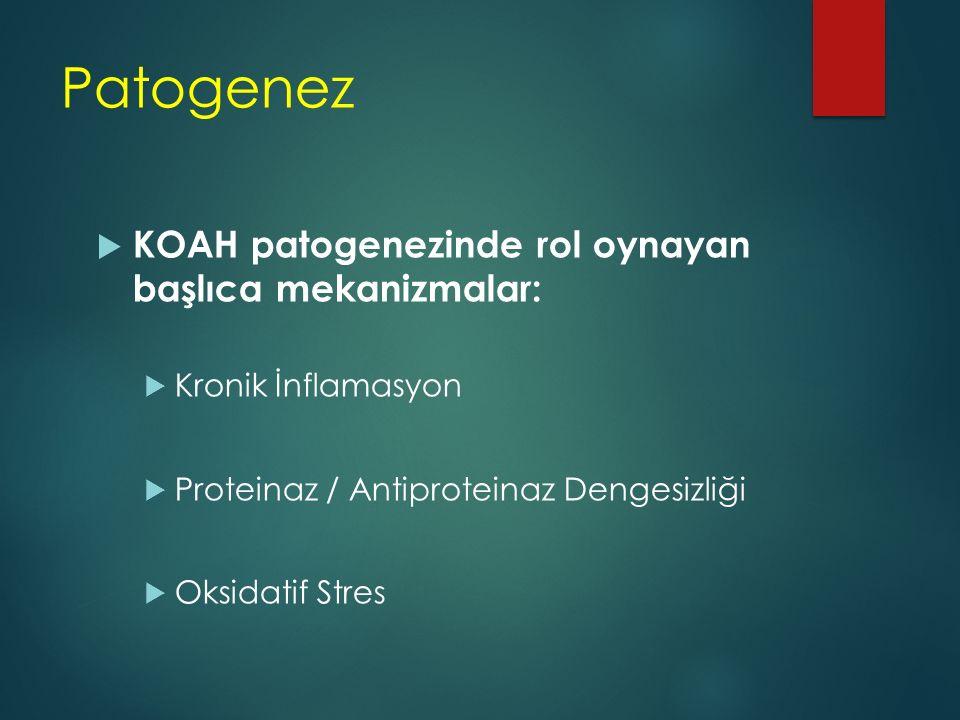 Patogenez  KOAH patogenezinde rol oynayan başlıca mekanizmalar:  Kronik İnflamasyon  Proteinaz / Antiproteinaz Dengesizliği  Oksidatif Stres