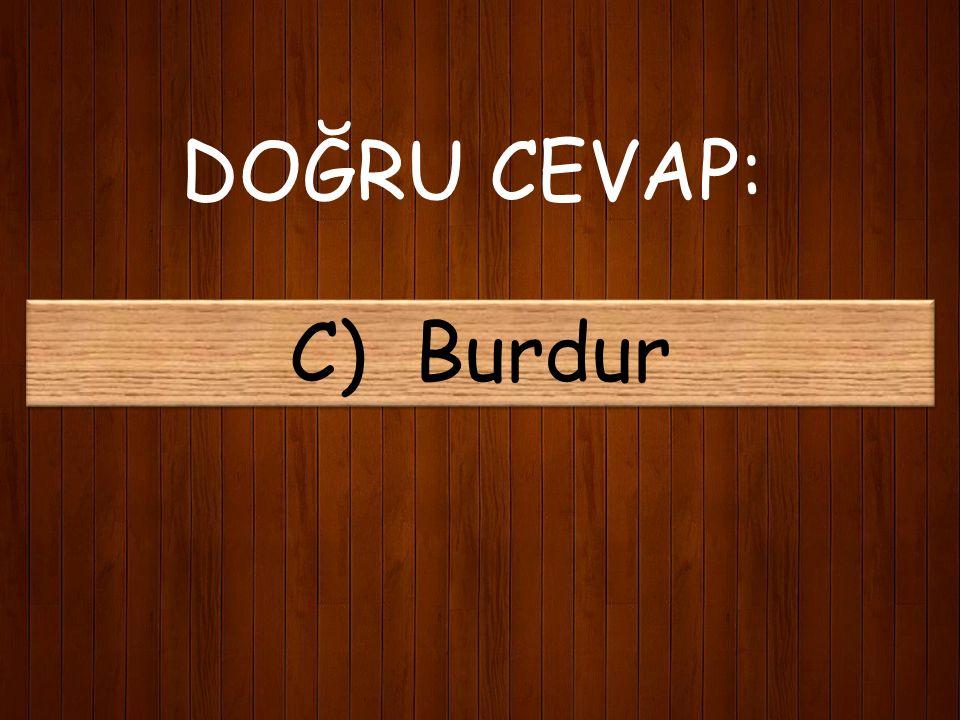 11) Mehmet Akif hangi ilin milletvekili seçilerek meclise girmiştir? A) Balıkesir B) Kastamonu C) Burdur D) Isparta