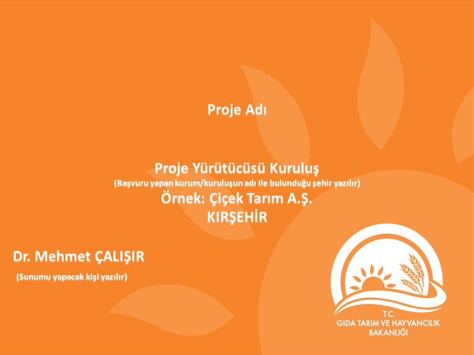 1 Proje Adı Proje Yürütücüsü Kuruluş (Başvuru yapan kurum/kuruluşun adı ile bulunduğu şehir yazılır) Örnek: Çiçek Tarım A.Ş. KIRŞEHİR Proje Yürütücüsü