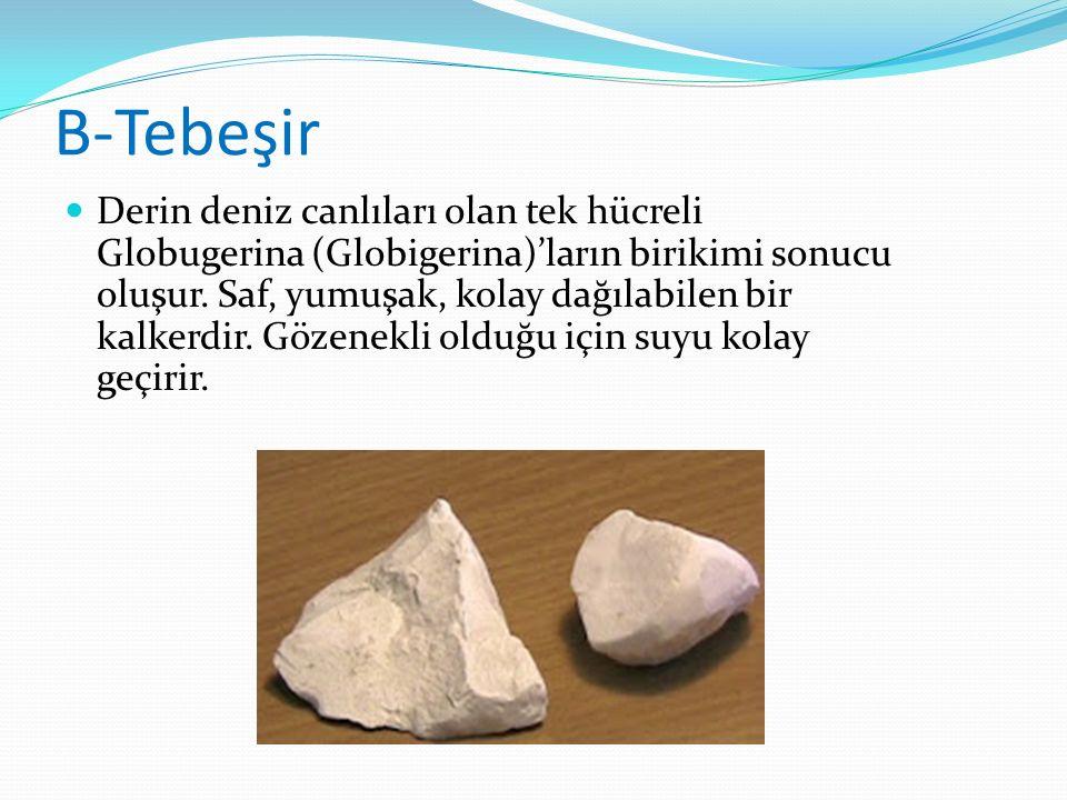 B-Tebeşir Derin deniz canlıları olan tek hücreli Globugerina (Globigerina)'ların birikimi sonucu oluşur. Saf, yumuşak, kolay dağılabilen bir kalkerdir