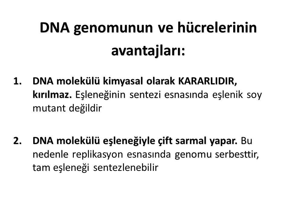DNA genomunun ve hücrelerinin avantajları: 1.DNA molekülü kimyasal olarak KARARLIDIR, kırılmaz. Eşleneğinin sentezi esnasında 1.DNA molekülü kimyasal