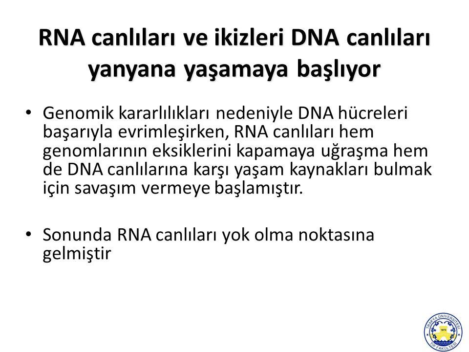 Genomik kararlılıkları nedeniyle DNA hücreleri başarıyla evrimleşirken, RNA canlıları hem genomlarının eksiklerini kapamaya uğraşma hem de DNA canlılarına karşı yaşam kaynakları bulmak için savaşım vermeye başlamıştır.