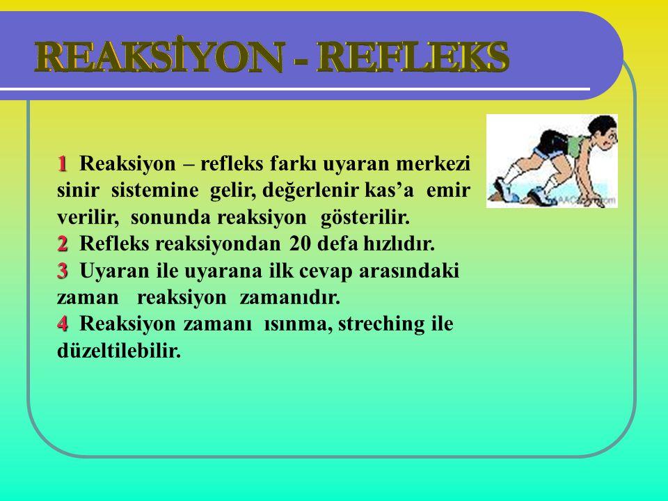 1 1 Reaksiyon – refleks farkı uyaran merkezi sinir sistemine gelir, değerlenir kas'a emir verilir, sonunda reaksiyon gösterilir.