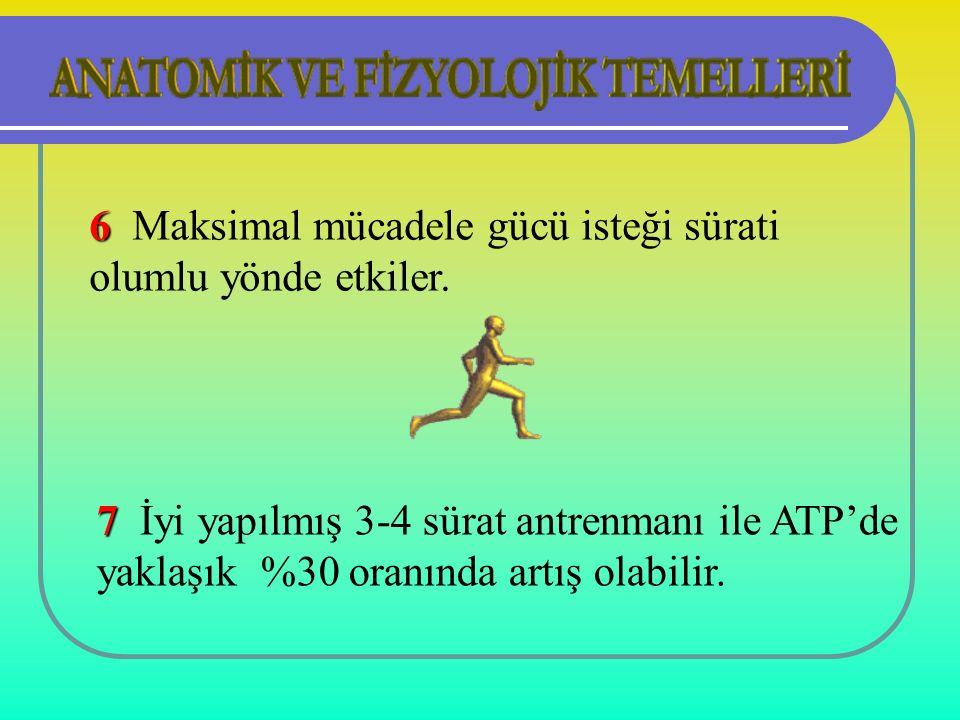 7 7 İyi yapılmış 3-4 sürat antrenmanı ile ATP'de yaklaşık %30 oranında artış olabilir.