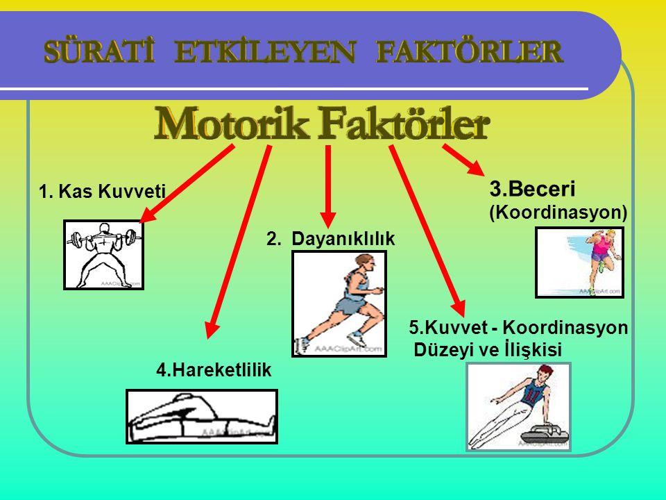 1. Kas Kuvveti 2.Dayanıklılık 4.Hareketlilik 3.Beceri (Koordinasyon) 5.Kuvvet - Koordinasyon Düzeyi ve İlişkisi