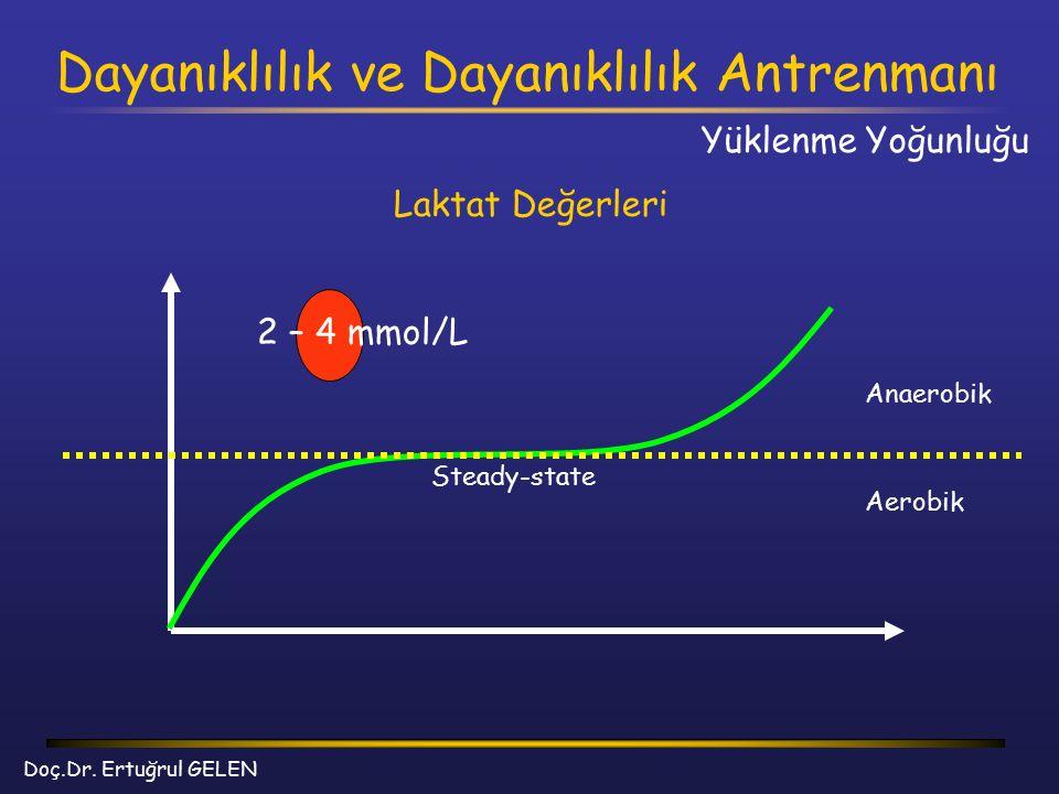 Dayanıklılık ve Dayanıklılık Antrenmanı Doç.Dr. Ertuğrul GELEN Laktat Değerleri Yüklenme Yoğunluğu 2 – 4 mmol/L Anaerobik Aerobik Steady-state